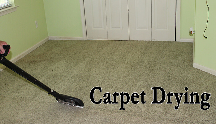 How Long Will it Take for My Carpets to Dry?